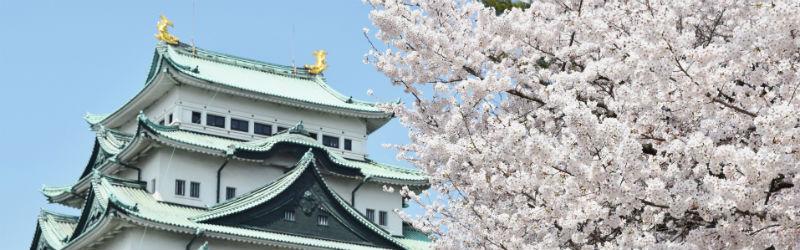 2016年4月3日(日)名古屋にてサロン様交流会開催!